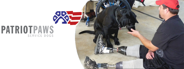 Ink to the People Gives back each month. In November, we're giving back to Patriot PAWS  - a service dog organization.