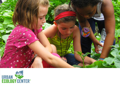 The Urban Ecology Center is our Giving Back Program recipient for July